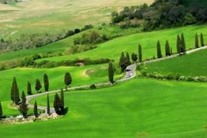 campagne-paysage